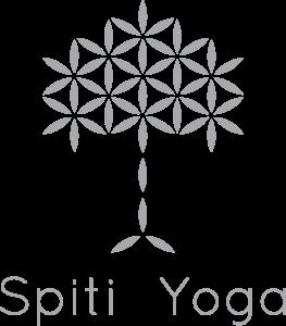 Logo-alt-Spiti-grey-big-263x300
